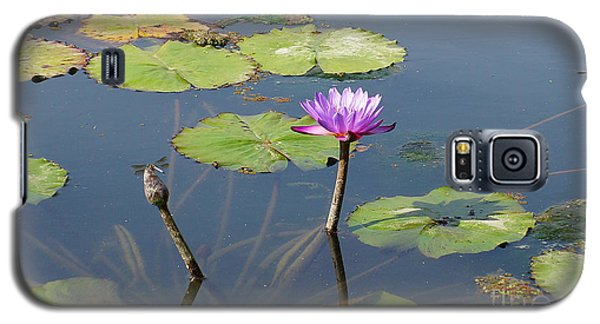 Water Lily And Dragon Fly One Galaxy S5 Case by J Jaiam