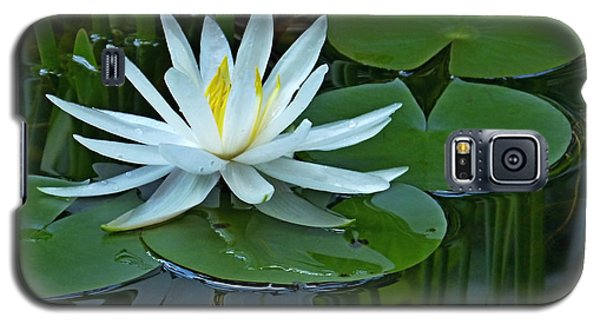Water Lily And Reflection Galaxy S5 Case
