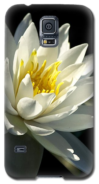 Galaxy S5 Case featuring the photograph Water Lily by Christina Rollo
