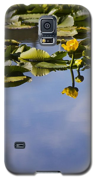 Water Lily Daydreams Galaxy S5 Case