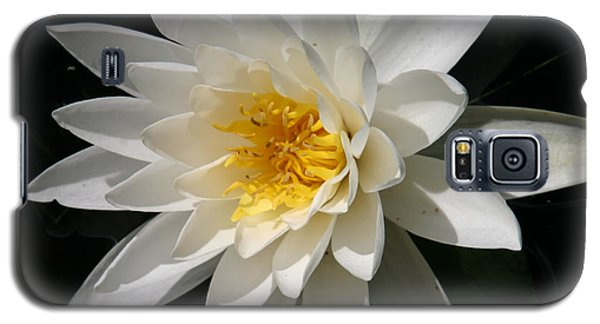 Galaxy S5 Case featuring the photograph Water Lily  by Denyse Duhaime