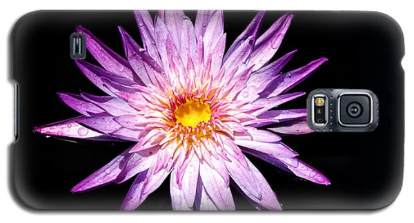 Water Lily. Galaxy S5 Case