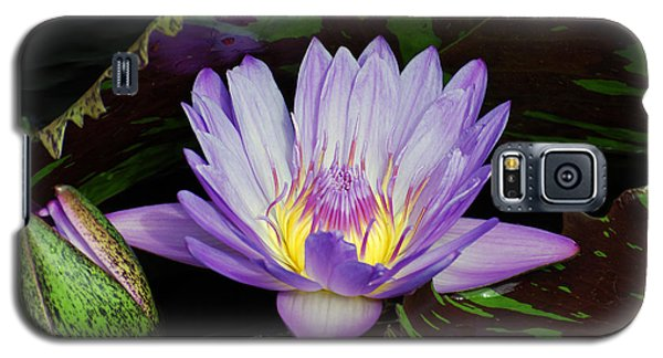 Water Lily Leopardess Galaxy S5 Case