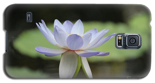 Water Lily Galaxy S5 Case by Lynn England