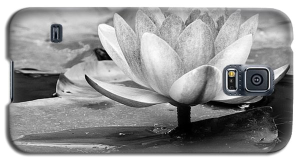 Galaxy S5 Case featuring the photograph Water Lily by Michelle Joseph-Long