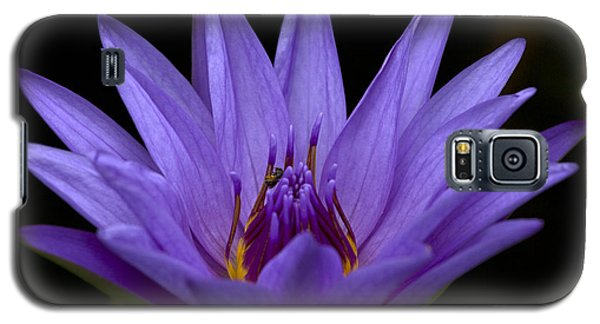 Galaxy S5 Case featuring the photograph Water Lily Photo by Meg Rousher