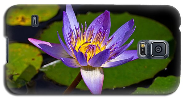 Water Lily  Galaxy S5 Case by Scott Carruthers