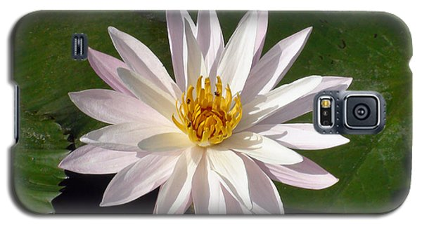 Galaxy S5 Case featuring the photograph Water Lily by Sergey Lukashin