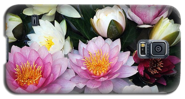 Galaxy S5 Case featuring the photograph Water Lily Series -2  by Haleh Mahbod