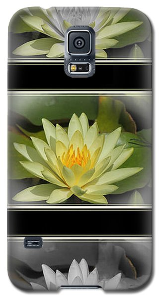 Water Lily Galaxy S5 Case by Teresa Schomig