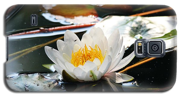 Galaxy S5 Case featuring the photograph Water Lily by Trina  Ansel