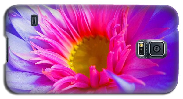 Water Lily Vibrant Galaxy S5 Case by Angela Murray