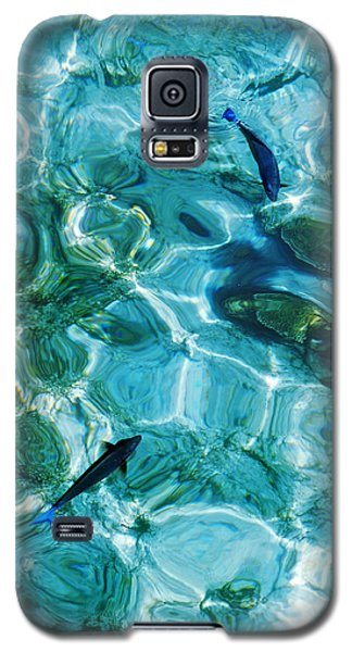 Water Meditation II. Five Elements. Healing With Feng Shui And Color Therapy In Interior Design Galaxy S5 Case