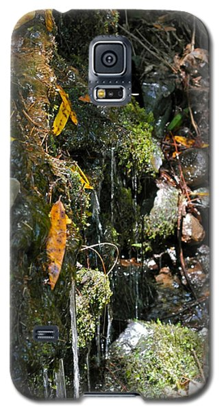 Water Of Life Galaxy S5 Case by Michele Myers