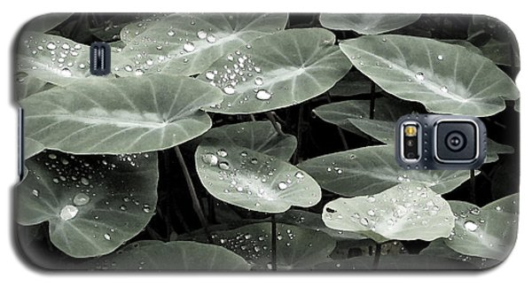 Galaxy S5 Case featuring the photograph Water On Ivy by Ellen Cotton