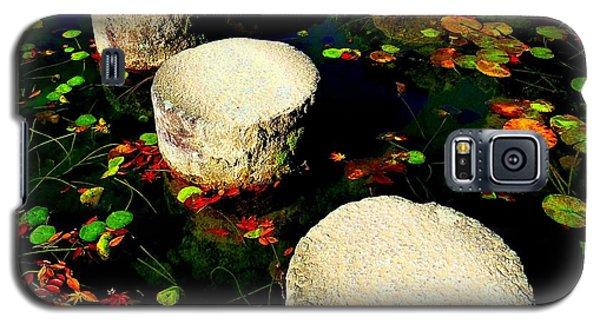 Water Path Galaxy S5 Case by Julia Ivanovna Willhite