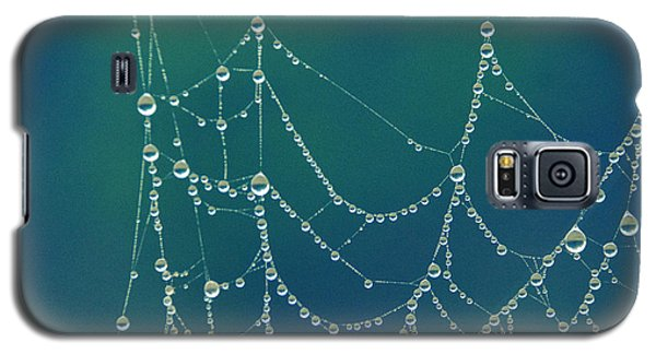 Water Web Galaxy S5 Case