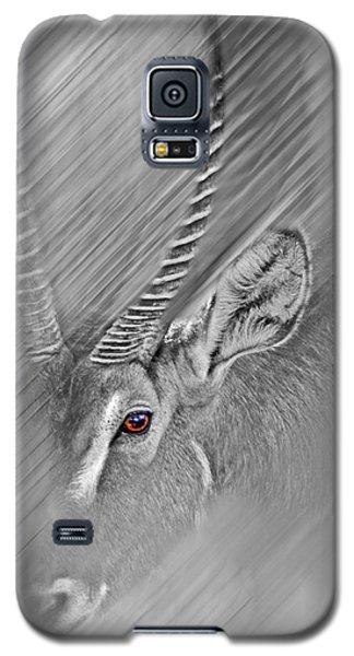 Waterbuck Galaxy S5 Case
