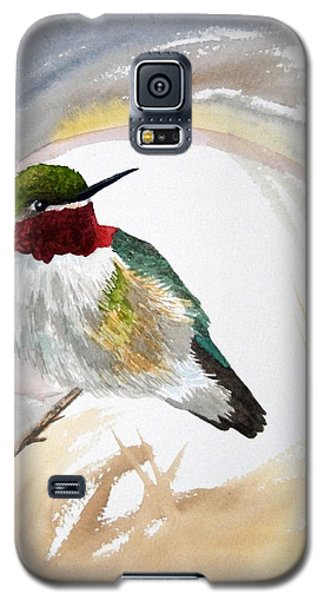 Watercolor - Broad-tailed Hummingbird Galaxy S5 Case