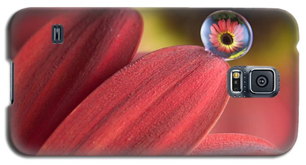 Waterdrop On Flower Petal Galaxy S5 Case