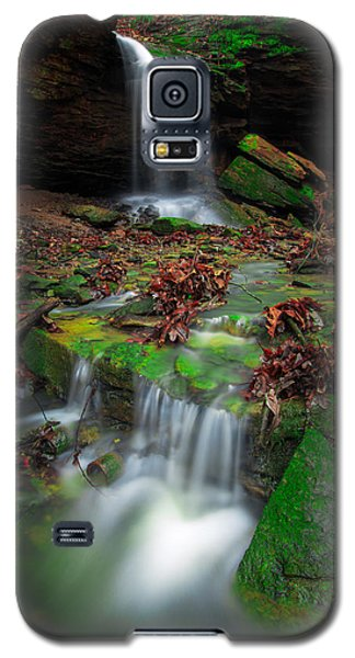 Frankfort Mineral Springs Waterfall  Galaxy S5 Case