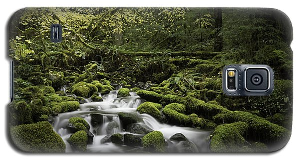 Waterfall In The Fall Galaxy S5 Case