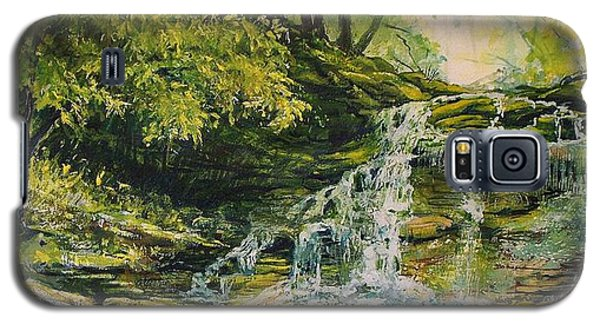 Waterfall In The Woods Galaxy S5 Case