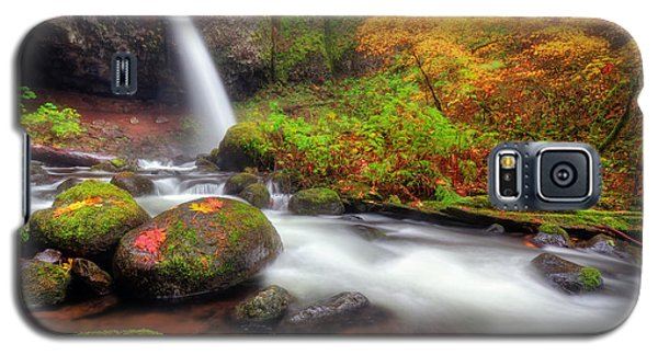 Waterfall With Autumn Colors Galaxy S5 Case