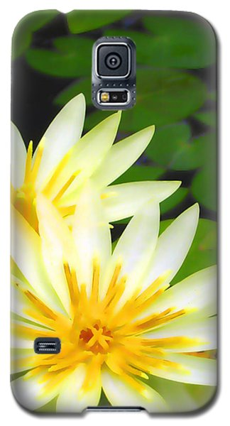 Waterlilies In Pond Galaxy S5 Case