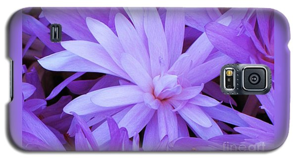 Waterlily Crocus Galaxy S5 Case