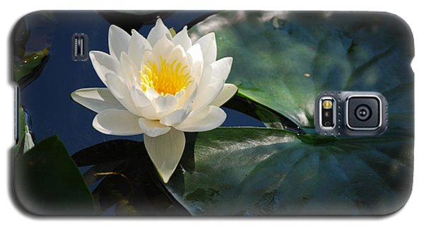 Galaxy S5 Case featuring the photograph Waterlily by Janis Knight