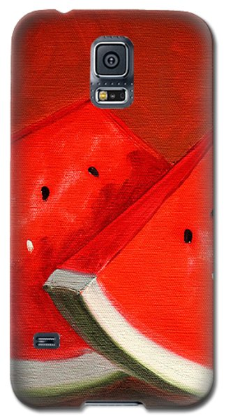 Watermelon Galaxy S5 Case by Nancy Merkle