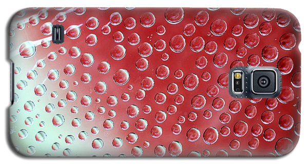 Watermelon Wrapping Galaxy S5 Case by Lorenzo Cassina