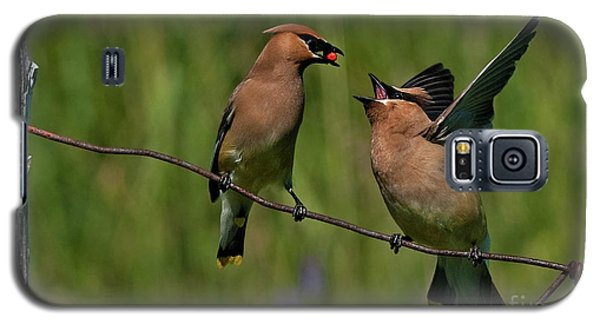 Waxwing Love.. Galaxy S5 Case