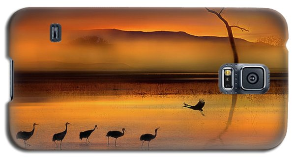 Crane Galaxy S5 Case - We Are Here Waiting For You by Shenshen Dou