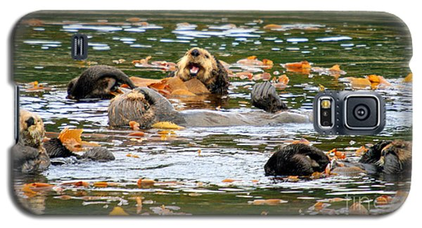 We Otter Be In Pictures Galaxy S5 Case