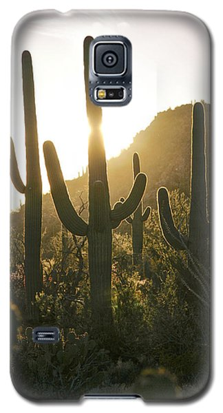 We Surrender Galaxy S5 Case