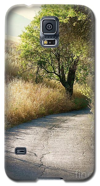 We Will Walk This Path Together Galaxy S5 Case