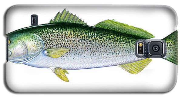 Weakfish Galaxy S5 Case