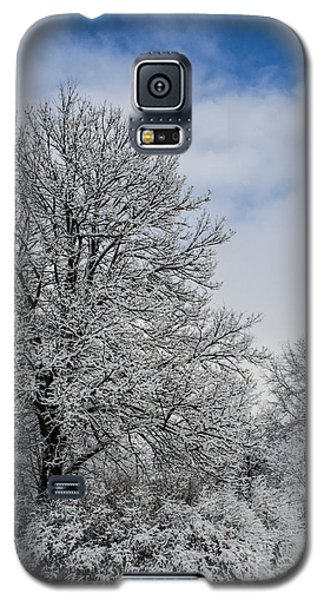 Wealth Of Snow After Nemo Galaxy S5 Case