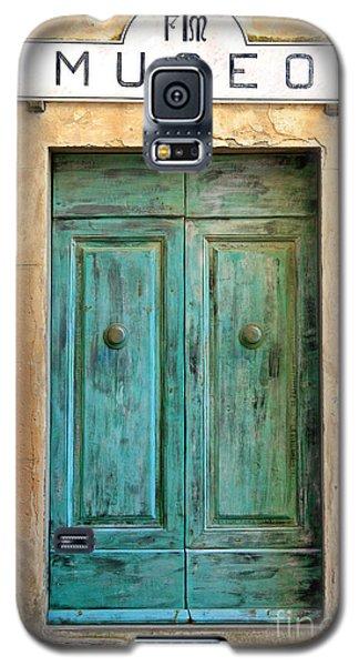 Weathed Museo Door Galaxy S5 Case