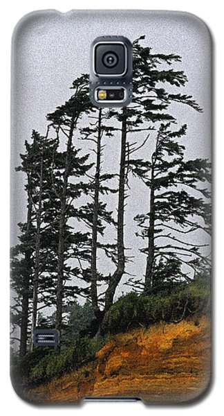 Weathered Fir Tree Above The Ocean Galaxy S5 Case by Tom Janca