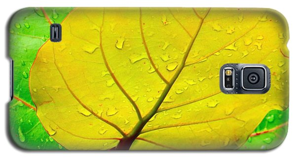 Weathered Galaxy S5 Case by Joy Hardee