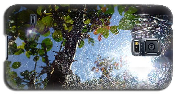 Web Galaxy S5 Case