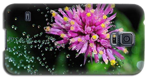 Webbed Water Droplets Galaxy S5 Case by Kelly Nowak
