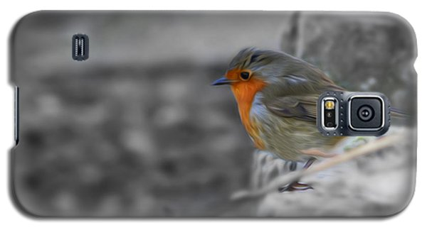 Wee Robin Galaxy S5 Case
