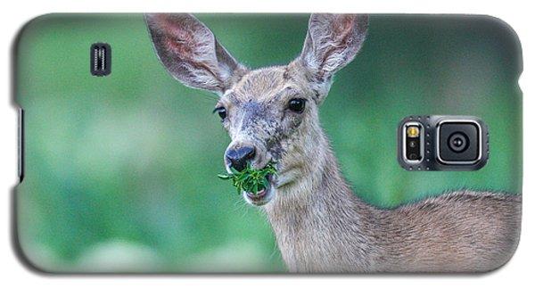 Weed Deer Galaxy S5 Case
