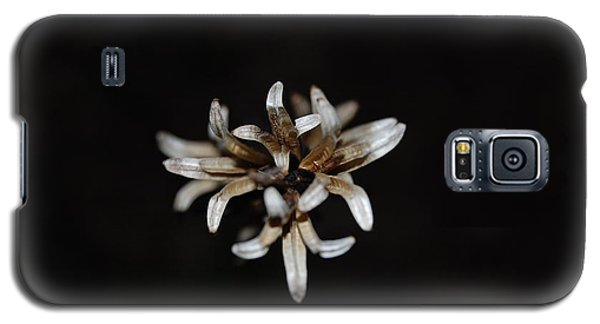 Galaxy S5 Case featuring the photograph Weed On Black by Mim White