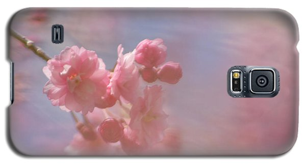 Weeping Cherry Blossoms Galaxy S5 Case
