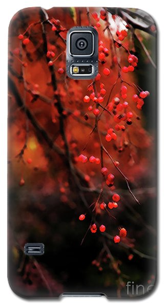 Galaxy S5 Case featuring the photograph Weeping by Linda Shafer